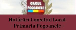 Comuna Pogoanele