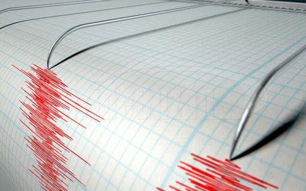 VIDEO Cutremur puternic în zona Vrancea. Seismul s-a resimţit şi la ...