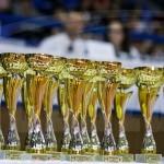 Trofee (4)