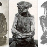The_San_Pedro_Mountain_Mummy